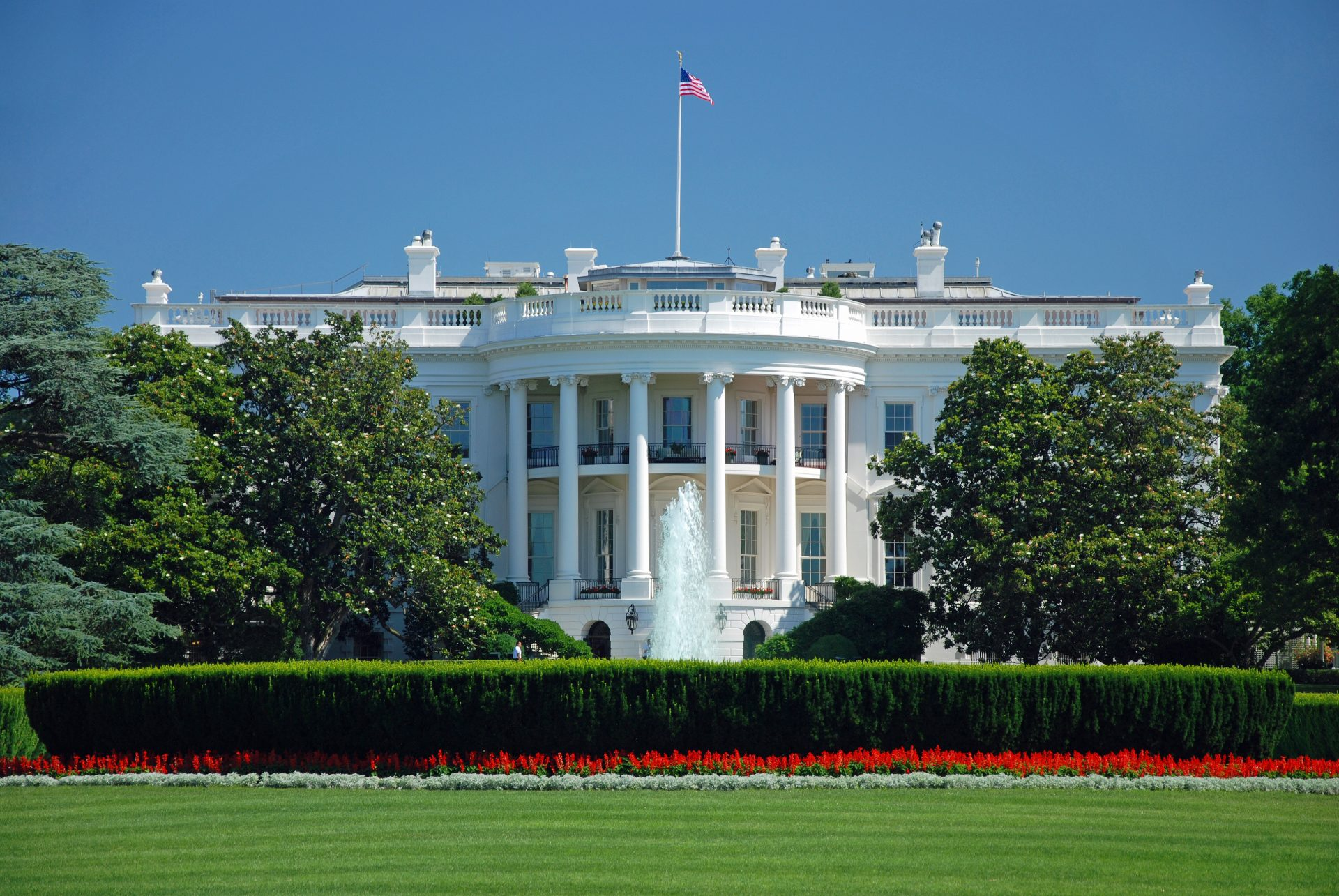 A Neurosurgery Resident in the White House
