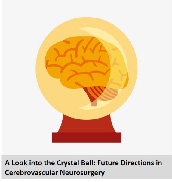 A Look into the Crystal Ball: Future Directions in Cerebrovascular Neurosurgery