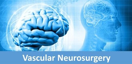 Vascular Neurosurgery: Patients First + Scientific Progress = Improving Outcomes