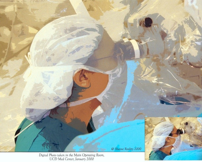 Highlighting the Global Influence of Women in Neurosurgery